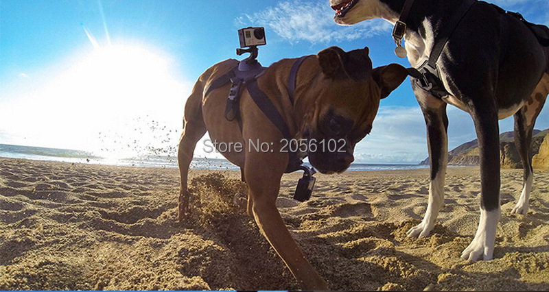 Go Pro Accessories Dog Harness Fetch Adjustable Chest Strap Mount for Xiaomi Yi GoPro HD Hero 4 3 SJCAM SJ4000 Action Camera