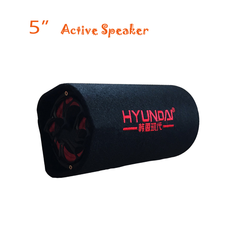 portable Hyudai 5 inch 12v , 220v car audio hifi active booster speakers tube, KTV boom box stage hifi speaker <font><b>subwoofers</b></font>