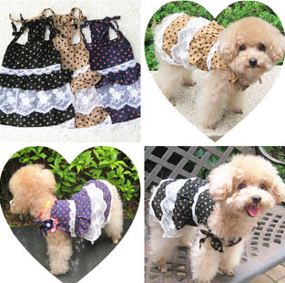 Dog clothes spring/summer Pet skirt wave point lace princess dress VIP Little teddy dog clothes(China (Mainland))