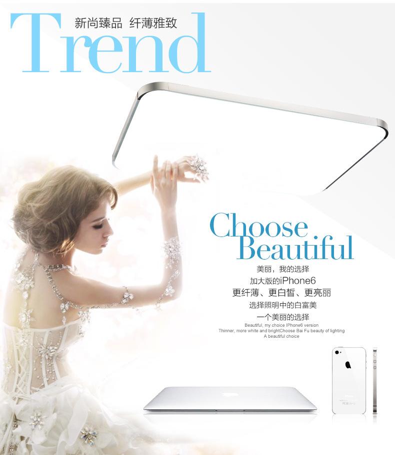 50%OFF new year LED Apple Ceiling lights 41W 65X43CM 2PCS kitchen light home lighting room light modern livingroom Free Shipping(China (Mainland))