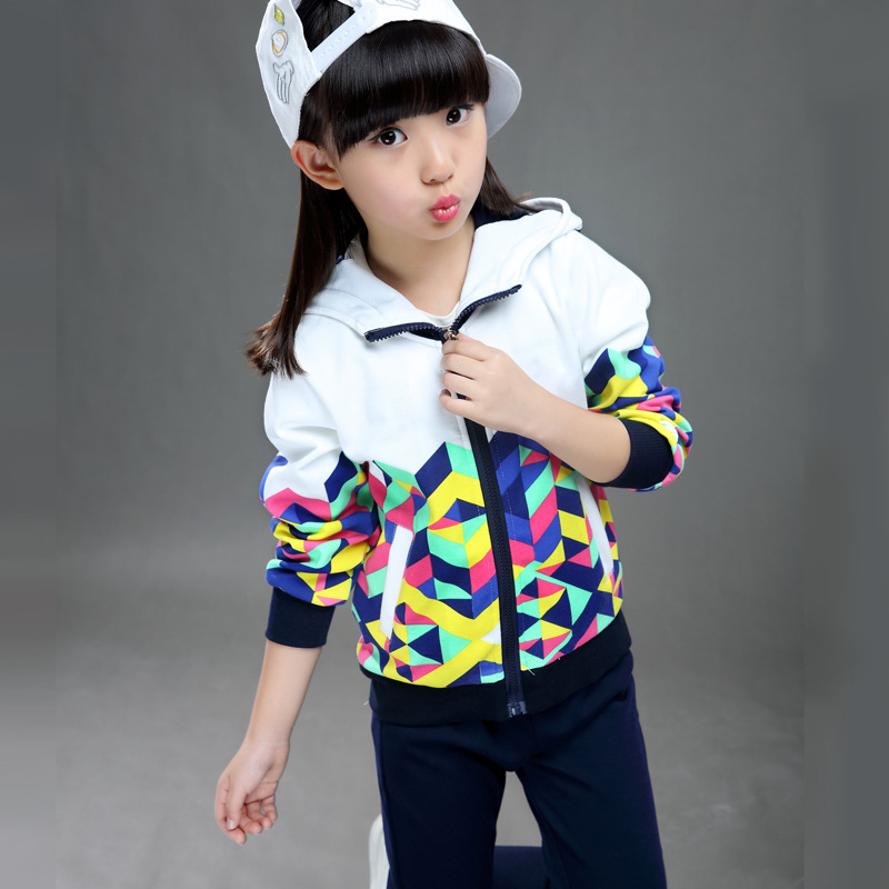 new baby Girls Tracksuit Spring autumn Girls Sport Suit Hoodies+Pants Girls Clothing Sets Girls Sweatshirts Floral Kids Clothes(China (Mainland))