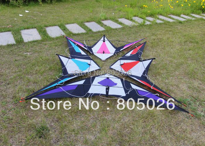 Free Shipping high quality 2.1m Immortal Sword dual line stunt kite with Control+Tools-loud sound albatross kite hot(China (Mainland))