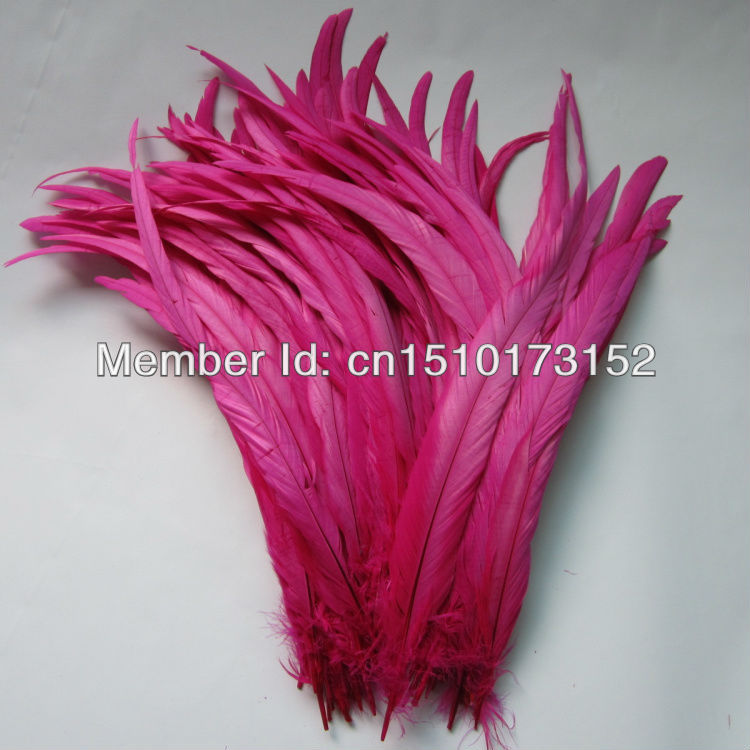 10s 12-14''/30-35cm Hot Pink Dyed Loose Rooster Tail plume feathers decoration Masks GJ1-5 - TiTi Feather Market store