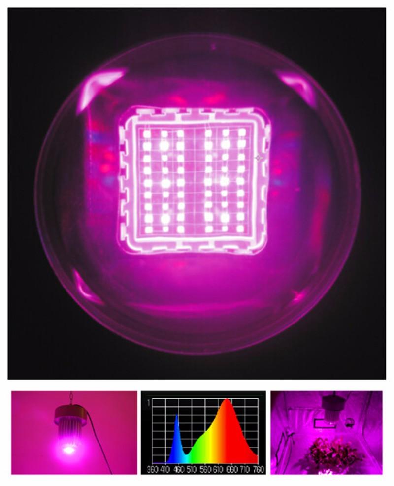diy led grow light full spectrum 2 years warranty plant grow lights. Black Bedroom Furniture Sets. Home Design Ideas