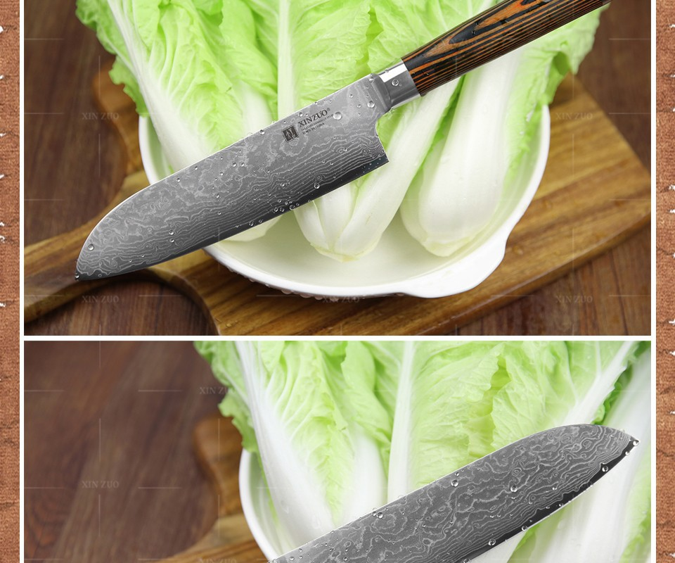 Buy 5 pcs kitchen knife set 73 layer Japanese VG10 Damascus  kitchen knife cleaver chef utility knife wood handle free shipping cheap