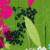Width 100CM GAM145-1 Flower Pattern Monitor Case/ Hydro Graphic Printing Film PVA Water Transfer Printing Film  Printing Inks