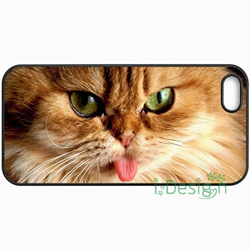 Fit for iPhone 4 4s 5 5s 5c se 6 6s 7 plus ipod touch 4/5/6 back skins cellphone case cover Cats Orange Persian Cat Black(China (Mainland))