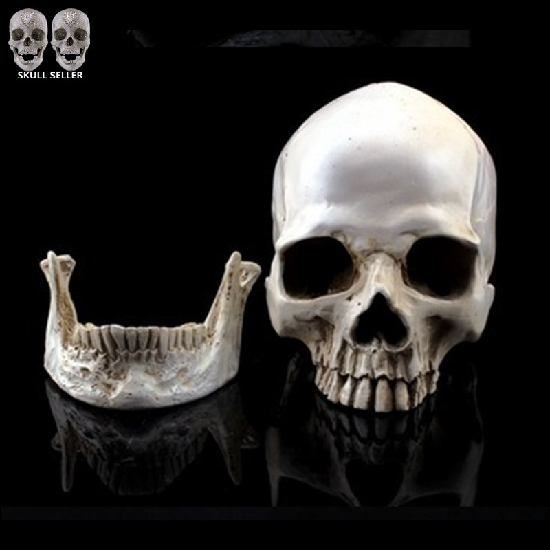 P-Flame Simulation Model 1:1 Human Skull Resin Skulls Separate jaw Home Decoration Terror Cranium Heads CrossBones(China (Mainland))