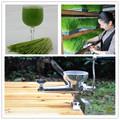Wheat grass juicer stainless steel multifunctional manual auger slow juice extractor fruit vegetable lemon juicing machine