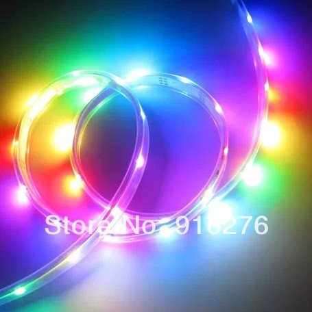 Wholesale 100m/lot DC12V 5m WS2811 5050 SMD RGB led digital magic strip 30leds/m waterproof IP67 in Silicone tube(China (Mainland))