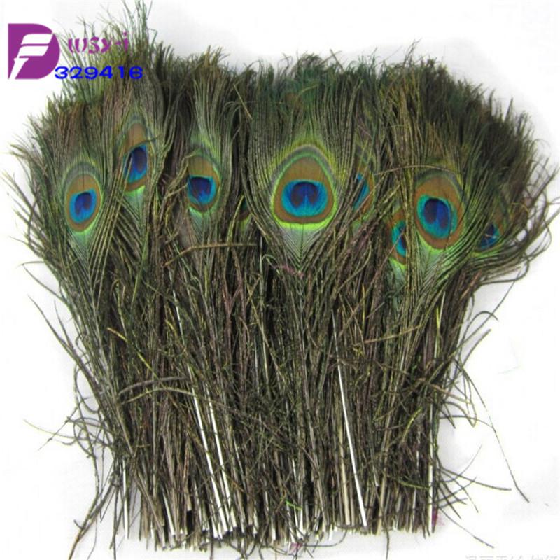 Peacock feather wholesale pcs natural long