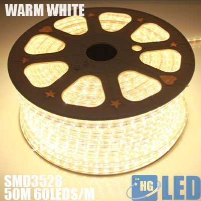 DHL FEDEX FREE SHIPPING +100M 220V voltage 3528 led flexible strip light+Power plug,warm white,60leds/m,4.8w/m,waterproof IP65(China (Mainland))