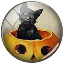 TAFREE חמוד בעלי החיים חתול מחמד 25mm זכוכית כחול עיני חתולי דפוס Flatback Camo DIY קרושון כיפת קסמי עבור Keychain שרשרת(China)