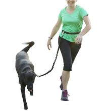 Hands Free Dog Leash with Waist Belt Adjustable Mudder Bungee Elastic Lead products for Running Jogging Walking Recommend Black