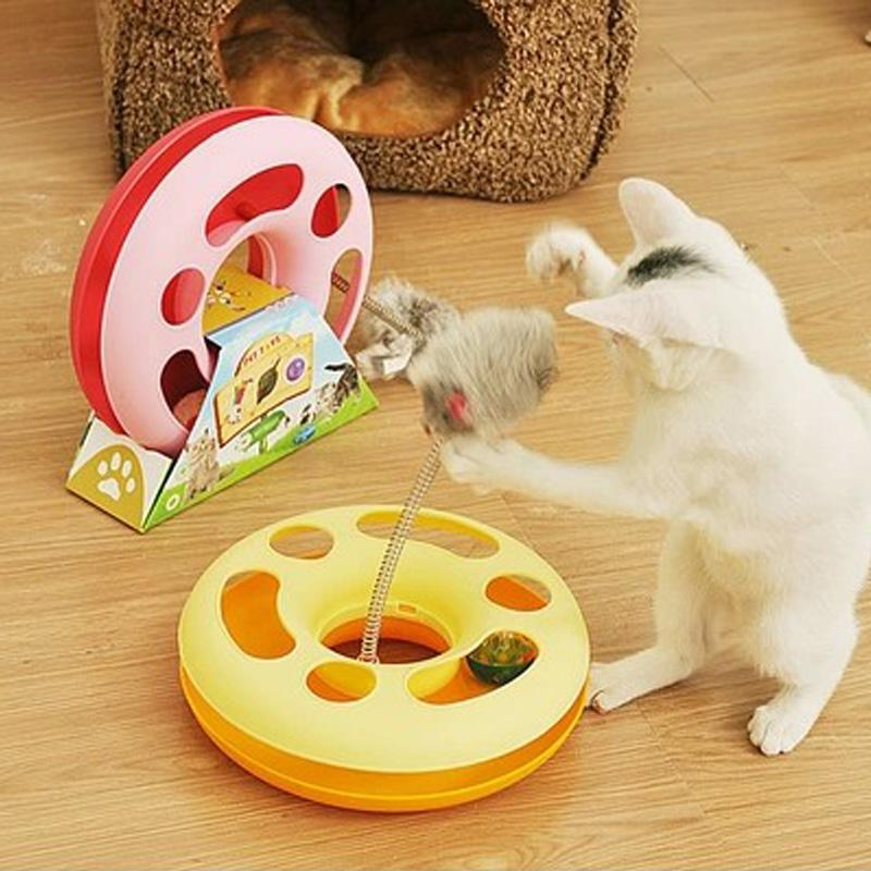 things kittens like to play with