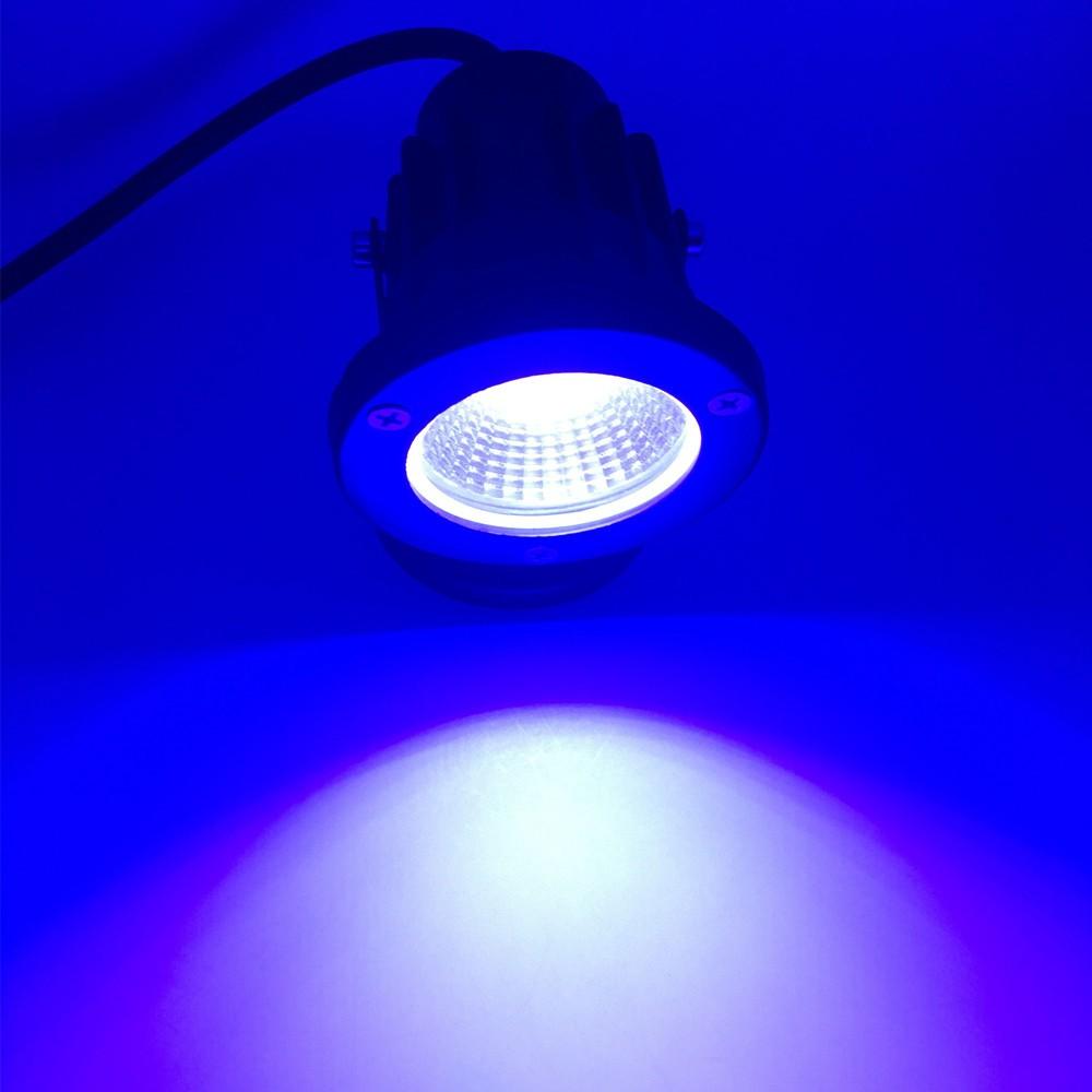 cob gard blue