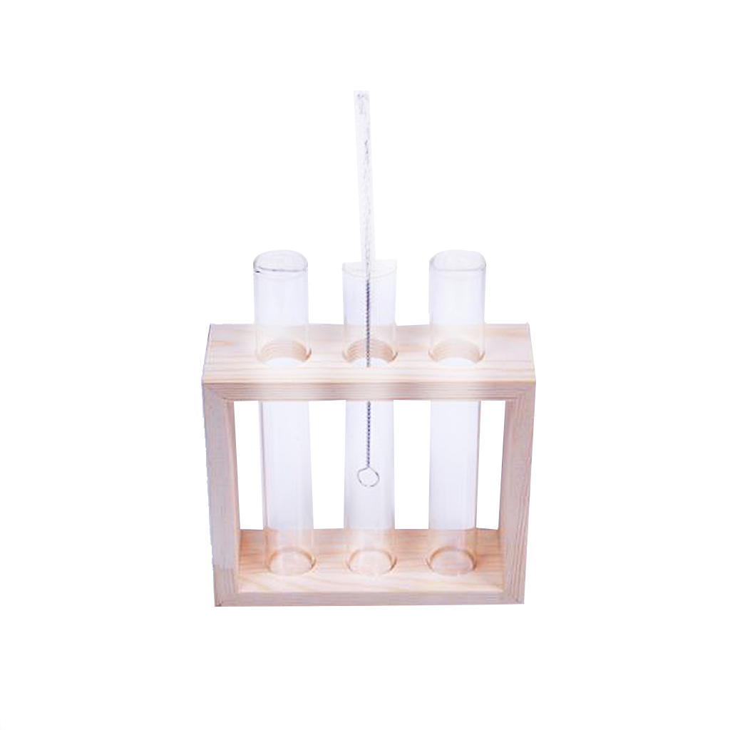Test Tube Glass Flowers Plant Vase Wooden Stand Holder Terrarium Container