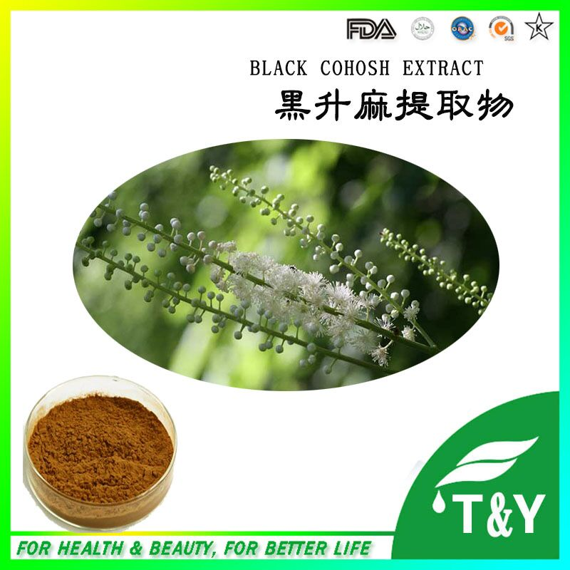 ISO Certified factoy supply Pure Natural powder Black Cohosh extract 300g/lot<br><br>Aliexpress