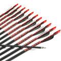 AF 12pcs New Carbon Arrows 31 Spine 500 Archery Arrows Shaft Target Practice Screw Tips