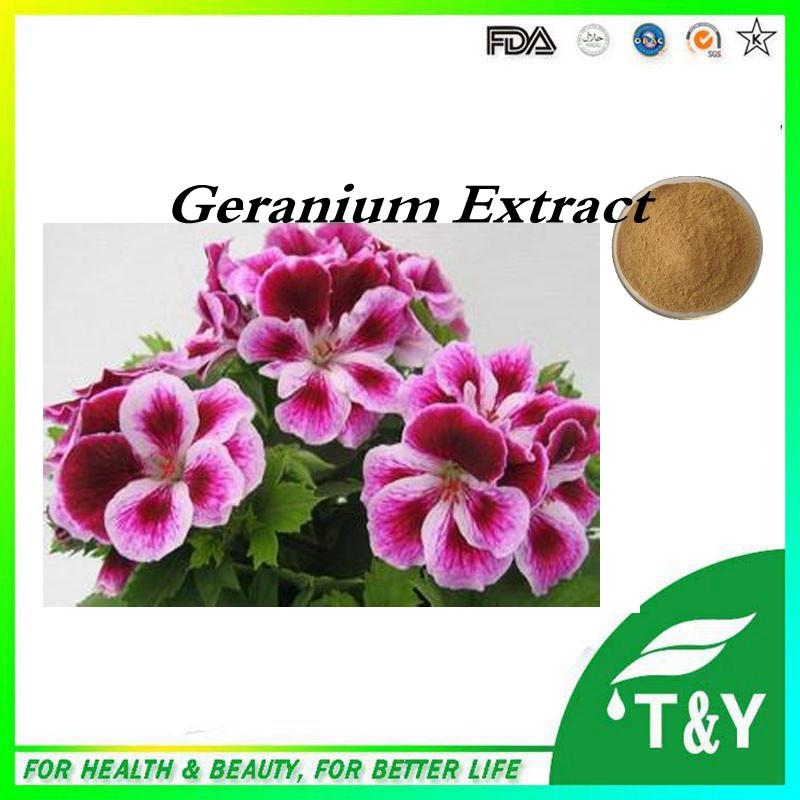 100% Natural Geranium Powder Extract, 1,3-Dimethylamylamine 700g/lot