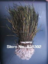 wholesale peacock tail feather