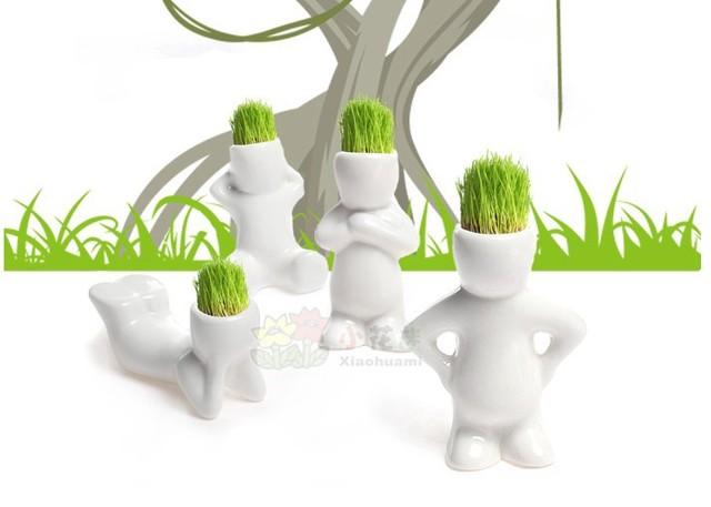 hot sale !Generation small grass doll lover diy mini plant bonsai plants bonsai,Plant Hair man Plant,sent seed as gift