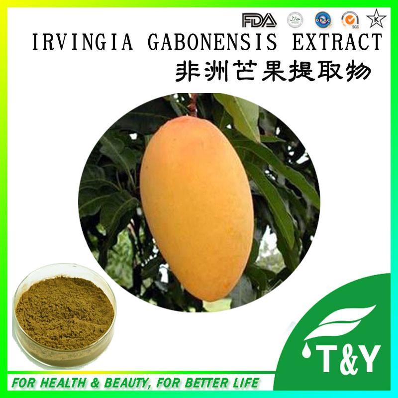 irvingia gabonensis seeds for sale  400g<br><br>Aliexpress