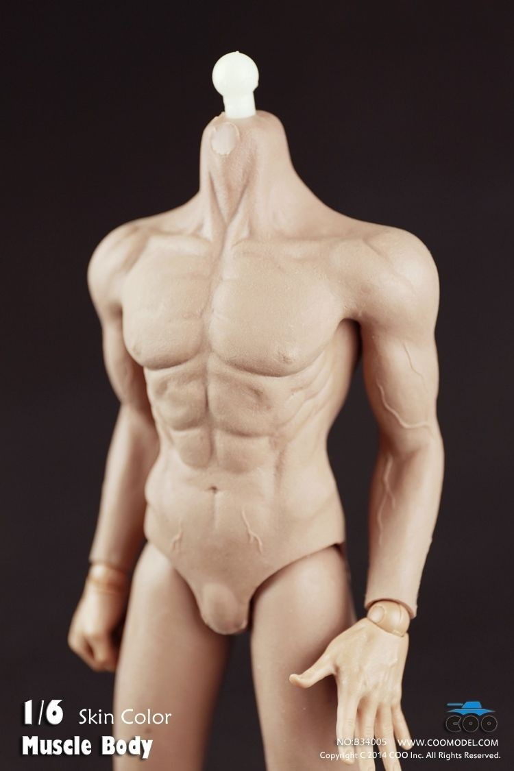 COOMODEL Navy Figures 1/6 Male Nude Motion Determine Physique With All Inclusive Plastic Muscular Ferrite (Delicate Rubber Pores and skin) B34005