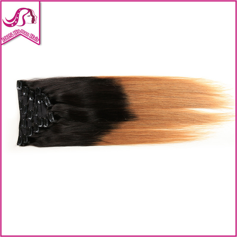 Full Head Clip In Hair Extension Human Remy Brazilian Hair Clip In Extensions 1Sets/Lot Colored Hair On Clips Two Tone T1B/27