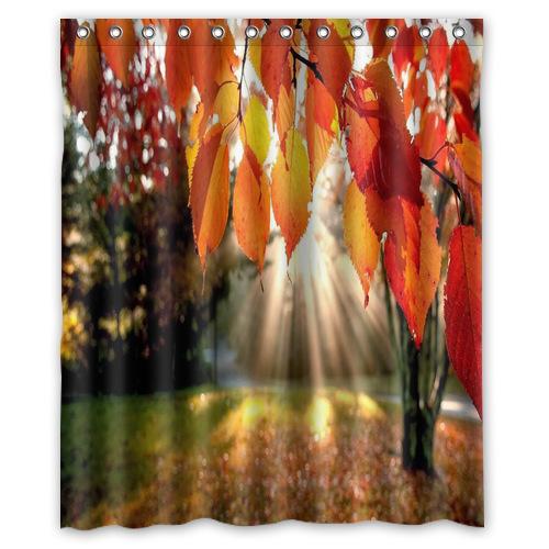 ... Bath-Curtain-trees-autumn-leaves-fall-sunlight-Shower-Curtains-60-x-72