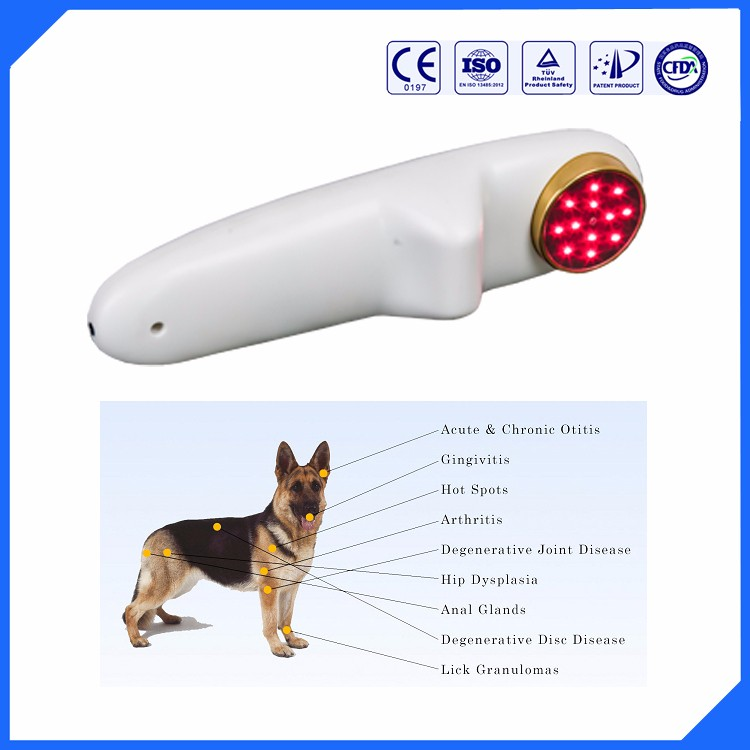 Natural therapy dog /cat joint and back pain reliever bio laser apparatus