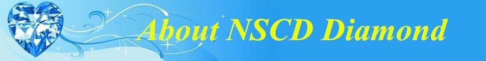 About NSCD
