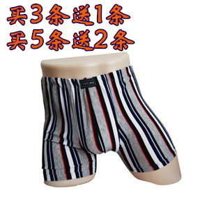Male boxer panties male trunk stripe panties