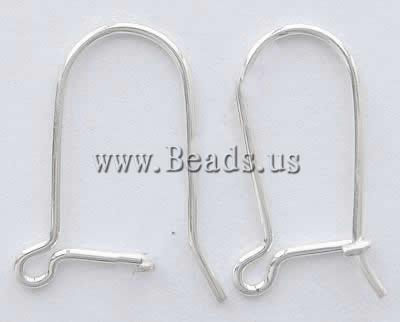 Free shipping!!!Stainless Steel Hook Earwire,Designs, 304 Stainless Steel, oril color, 33x12.50x0.70mm, 1000Pairs/Bag