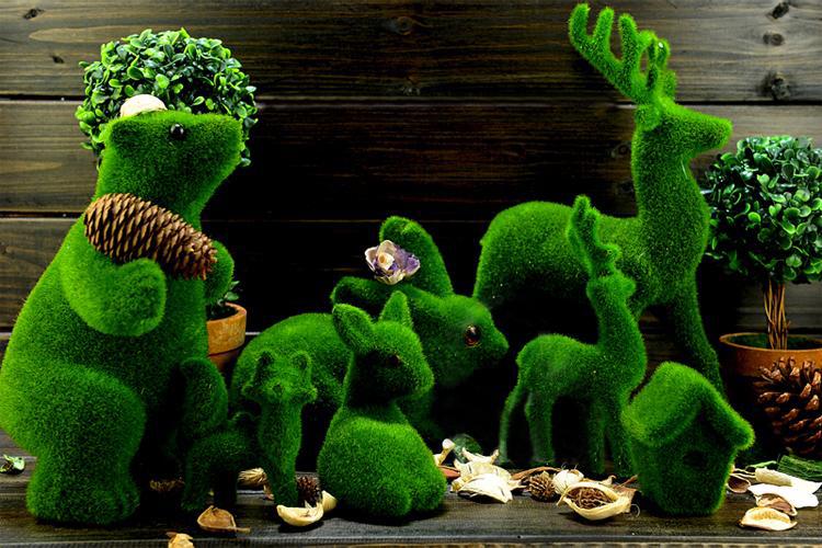 - Decor jardin maison pau ...