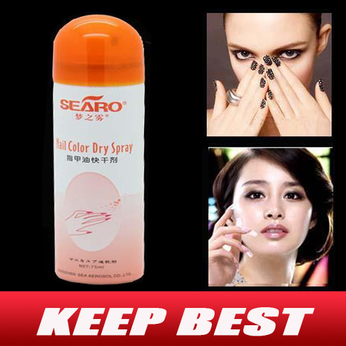 New Pro Quick Dry Dryer Spray For Nail Art Polish Perfect Gift Easy And Fast Free Shipping