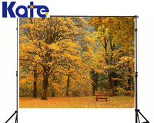 wedding Photo Backdrops Yellow Leaf Chair Photography Backdrops children Trees Sky Studio Photo Backdrop family Nature kate baby