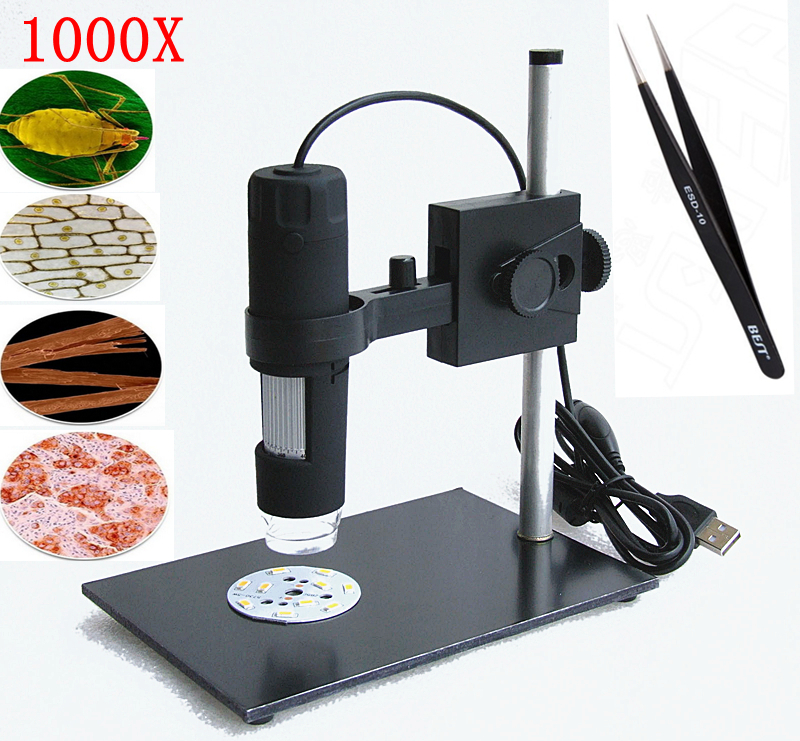 USB 1000X Digital Microscope 8 LED + Adjusted Stand 2.0 MP Endoscope Magnifier Camera with Measurement Software Free Shipping(China (Mainland))