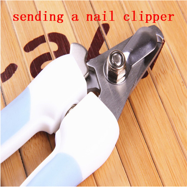Upscale pet nail clippers hot dog cat stainless steel nail clippers wholesale high quality dog nail clippers sending nail file(China (Mainland))