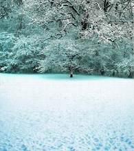 2M*1.5M(6.5FT*5FT) photo studio floor Cold snow treeChristmas backgroundsZZ CM-0194