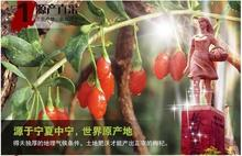 2014Yr 100 Original 50g wolfberry Top Grade Newest Chinese goji berries goji berry goji Herbal Tea