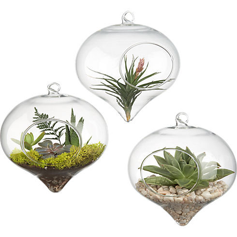 Transparent Clear Hanging Glass Round Cone-shapeTerrarium Plant Flower Vase Hydroponic Container Pot Wedding Home Decor Crafts(China (Mainland))