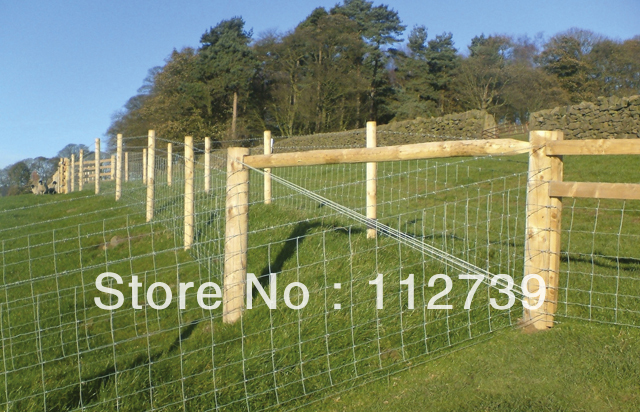 Field Fence Supplier, Convenient to Install, Length 50m, Height 0.8m, Low Carbon Steel Wire Material