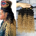 Ombre Burgundy Brazilian Hair Kinky Curly Virgin Hair Extensions 4 piece lot Ombre Brown Hair Bundles Blonde Jerry Curly Weave