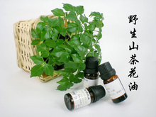 Oil wholesale base oil manufacturers 100% pure authentic wild camellia oil massage Australia 10ml hair remover(China (Mainland))