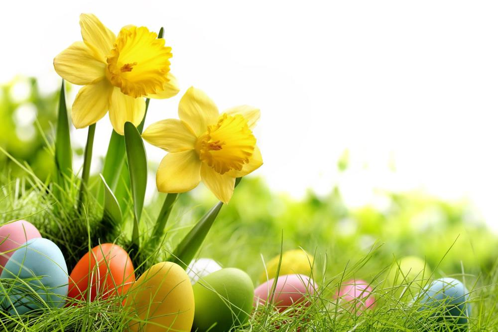 300cm*200cm Easter Day Egg meadow flowers background easter photography backdrops ZJ
