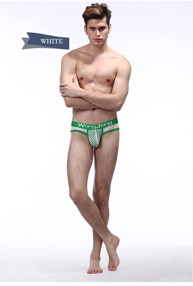 Sexy Men Underwear Breathable Mesh Mens Nylon Briefs Comfortable Mens Silk Bikini Underwear Fashion Cueca Ropa  Hombre Jockstrap