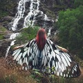 Women Butterfly Wing Large Fairy Cape Scarf Pashmina Bikini Cover Up Chiffon Gradient Beach Cover Up