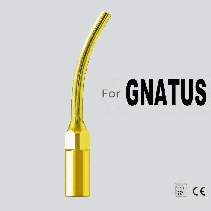 CG2T, GNATUS PROSTHETICS TIP,POST REMOVAL,TITANIUM PLATED,ORAL HYGIENE, DENTAL TIP(China (Mainland))
