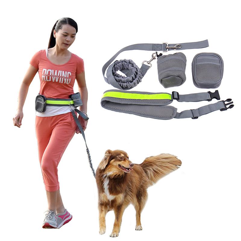 Беспроводной поводок для собаки